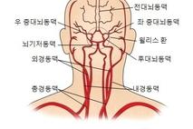 허혈성 뇌혈관 질환(Ischemic cerebral vascular disease)